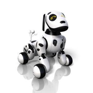 Zooner cane robot