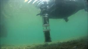 pesci robot 2