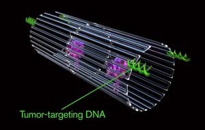 nanorobot vs tumori 1