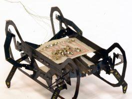 Hamr il robot ispirato allo scarafaggio